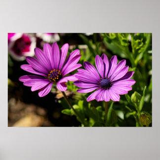 Pretty Purple Flower Flora Canvas Wall Decor Print