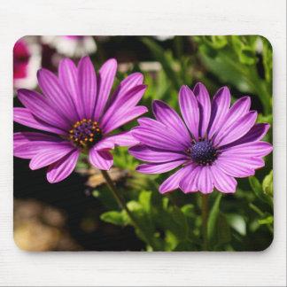 Pretty Purple Flower Floral Photo Gift Mousepad