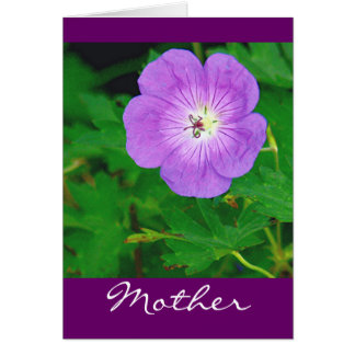 PRETTY PURPLE FLOWER / MOTHER'S DAY CARD