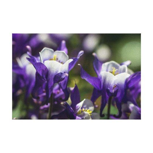 Pretty Purple Flowers Canvas Print