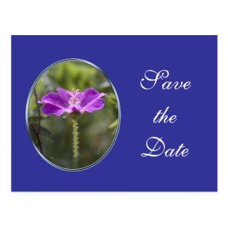 Pretty purple garden flower save the date wedding post cards