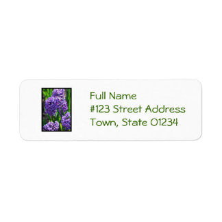 Pretty Purple Hyacinth Return Address Label