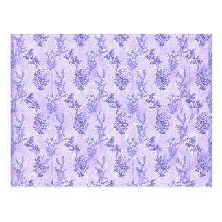 Pretty Purple Lilacs Postcard