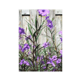 Pretty Purple Mexican Petunias by a Fence Canvas Print