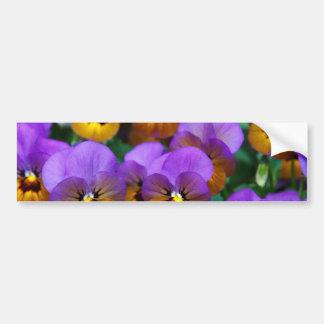 Pretty Purple Pansies in a Field Bumper Sticker