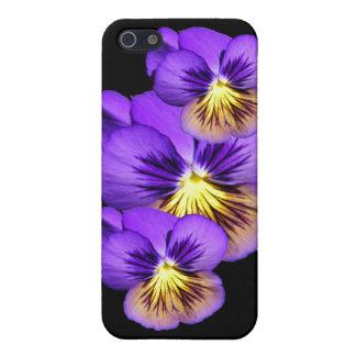 Pretty Purple Pansies iPhone Case 5C/5/5S/4