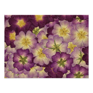 Pretty Purple Petals Poster