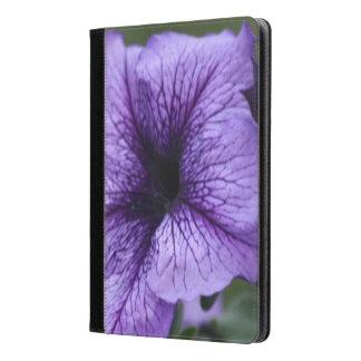 Pretty Purple Petunia