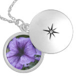 Pretty Purple Petunia Round Locket Necklace