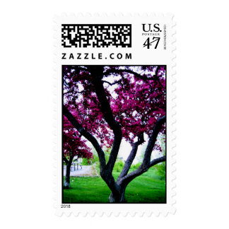Pretty Purple Postage