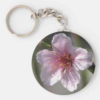 Pretty Raspberry Bloom Basic Round Button Keychain