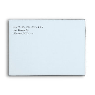Pretty Red Cardinals Wedding Invitation Envelope