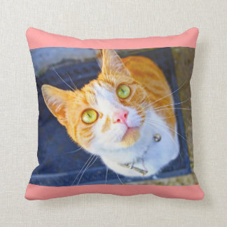 Pretty red cat throw pillows