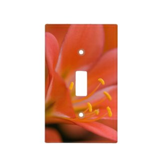 Pretty Red Clivia Flower Switch Plate Cover