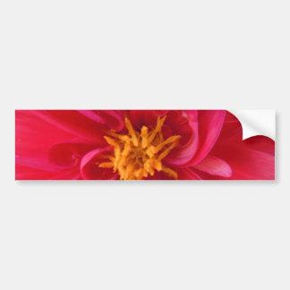 Pretty Red Dahlia Bumper Sticker