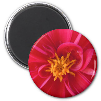 Pretty Red Dahlia - Whimsy Magnet