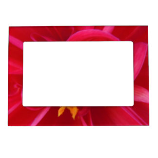 Pretty Red Dahlia - Whimsy Magnetic Frame