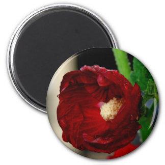Pretty red flower refrigerator magnet