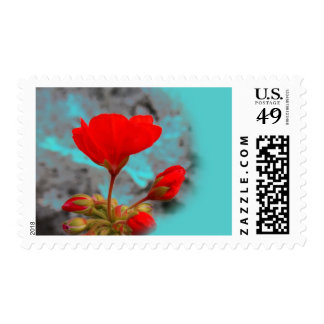Pretty Red Flower Stamps