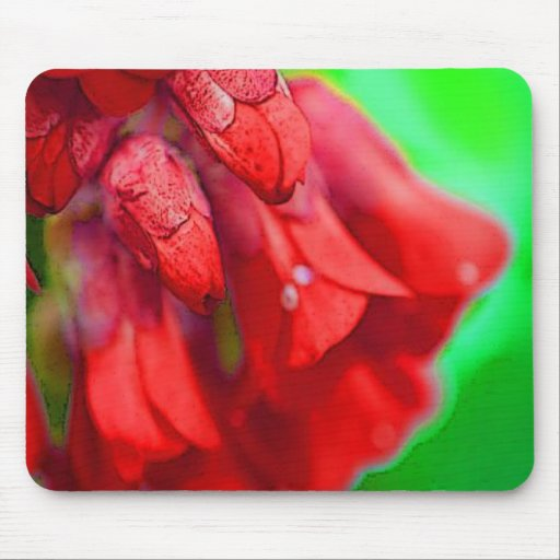 Pretty Red Flowers Mouse Pad