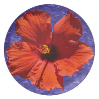 Pretty Red Hibiscus Flower Plate
