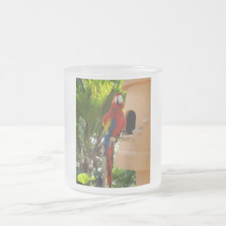 Pretty Red Parrot 10 Oz Frosted Glass Coffee Mug