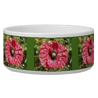 Pretty Red Poppy Flower Macro Dog Bowl