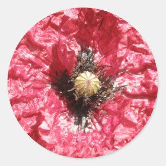 Pretty Red Poppy Flower Macro Stickers