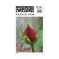Pretty Red Rose Postage