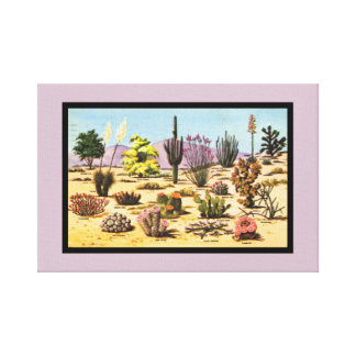 Pretty Retro Cactus Chart Girly Dusty Pink Desert Canvas Print