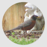 Pretty Robin Classic Round Sticker