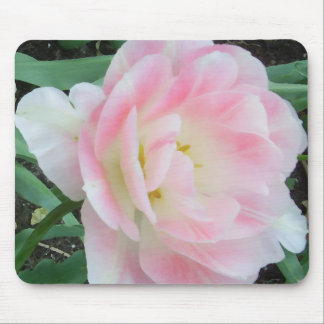 Pretty Romantic Feminine Flower White Pink Gifts Mouse Pads
