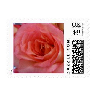 Pretty Rose Postage