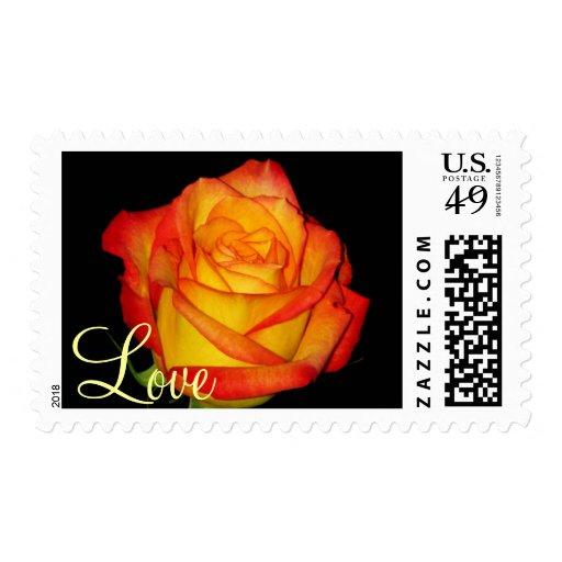 Pretty Rose Stamp