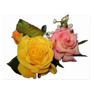 Pretty Roses Postcard
