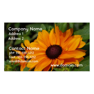 Pretty Rudebechia Business Cards