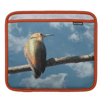 Pretty Rufous Hummingbird iPad Sleeve