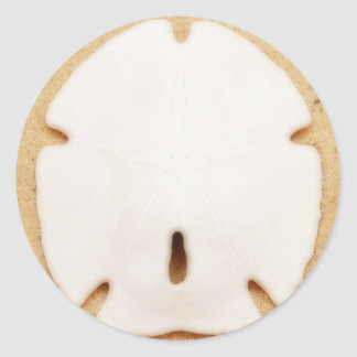 Pretty Sand Dollar Classic Round Sticker