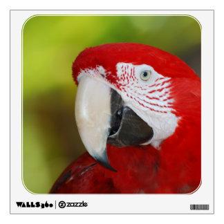 Pretty Scarlet Macaw Wall Skin