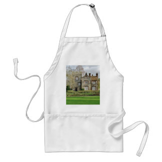 Pretty Scene With Old Buildings Adult Apron