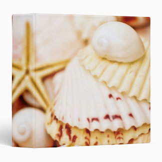 "Pretty Seashells 1.5"" Photo Album Binder"