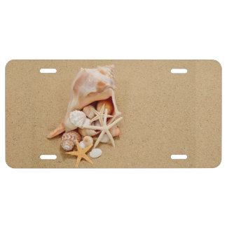 Pretty Seashells on a Beach License Plate