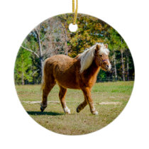 Pretty Shetland Pony Ceramic Ornament
