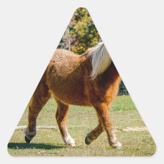 Pretty Shetland Pony Triangle Sticker