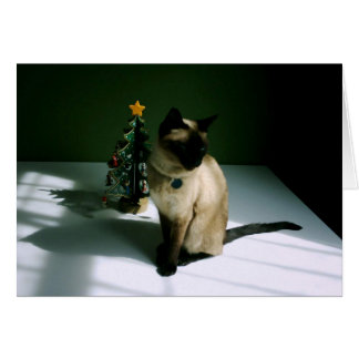Pretty Siamese Cat with Tree Greeting Cards