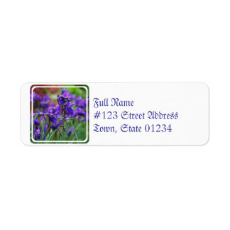 Pretty Siberian Iris Labels