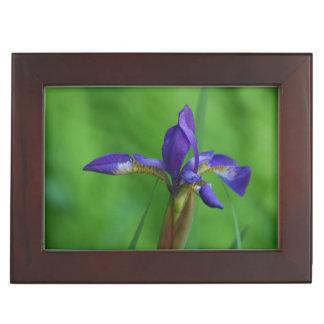 Pretty Siberian Iris Keepsake Boxes