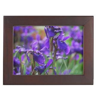 Pretty Siberian Iris Memory Boxes