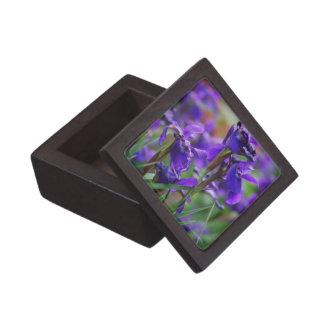 Pretty Siberian Iris Premium Jewelry Boxes