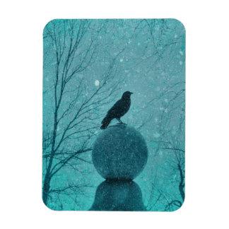 Pretty Snow Crow Rectangular Photo Magnet